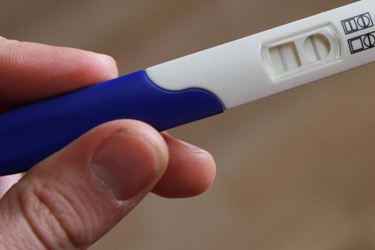 pregnant-2277768_1920